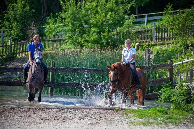 2 Reiter am Teich