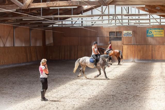Reitunterricht 2 Pferde